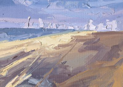 A Turbulent Day on the Sands